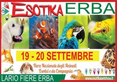 ESOTIKA PET SHOW- Erba(CO)