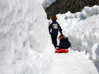 Le due cose più belle, l'amore e la neve, che fanno sì che si guardi il mondo con occhi di nuovi puri. (Charles Finch)