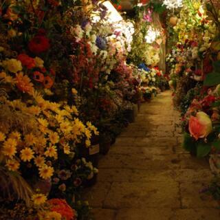 Serra di fiori artificiali