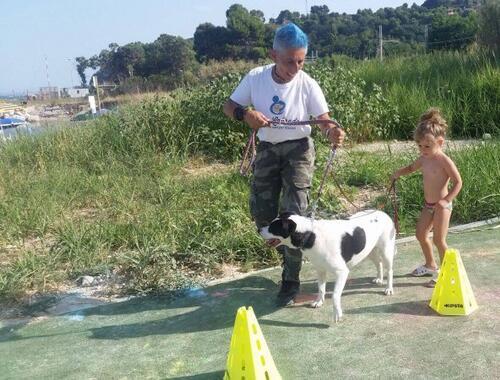 GIRASOLE camping village - Pet educational