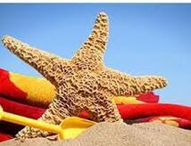 Juli All-Inclusive-Angebot Hotel in der Nähe des Meeres Bellaria Igea Marina Rimini