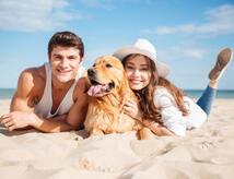 Offerta All Inclusive a Bellaria con spiaggia attrezzata per Cani