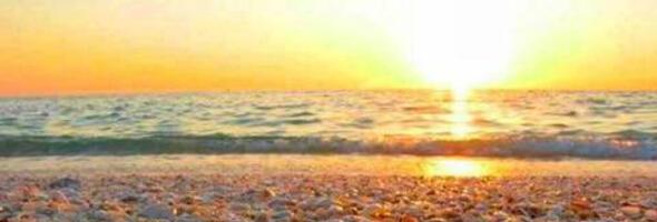 residencehotelfellini it 1-it-299138-offerta-residence-a-marina-centro-rimini-giugno 002