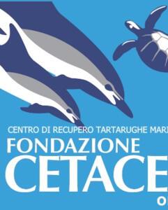 vacanzeinaquilone it 2-it-305490-riccione-albe-in-controluce-yoga-al-sorgere-del-sole-villa-mussolini 020