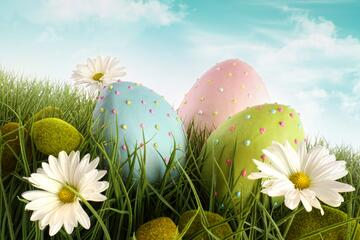 Easter Offer with Child staying Free