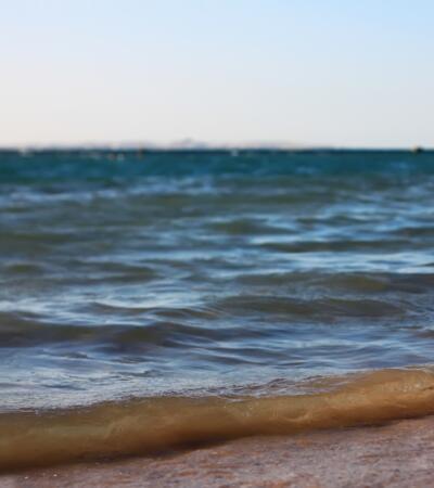 patriziahotel it 1-it-251138-inizio-giugno-a-riccione-in-hotel-con-spiaggia-compresa 049