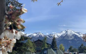 dalailamavillage it news-campeggio-villaggio-chatillon 017