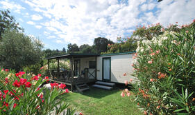 campingdeifiori en 1-en-301177-special-15-discount-in-camping-in-pietra-ligure-surrounded-by-nature-and-with-swimming-pool 008