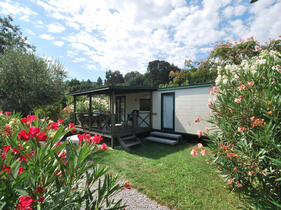 campingdeifiori en 1-en-301177-special-15-discount-in-camping-in-pietra-ligure-surrounded-by-nature-and-with-swimming-pool 011