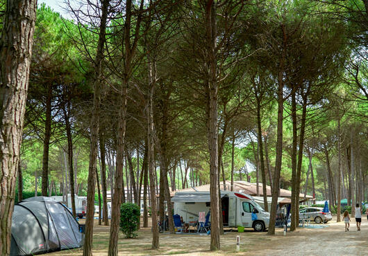 iltridente da liste-over-tilbud-pa-campingplads 019