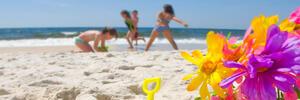solehotel it 1-it-316059-luglio-hotel-sul-mare-misano-adriatico 008