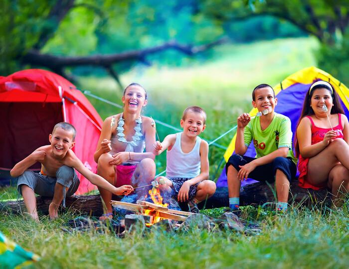 CampingCard ACSI. na placu namiotowym na kempingu w Delcie Padu