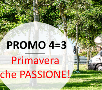 miramarecamping it 3-it-314214-news-2021-nuovo-palcoscenico 015