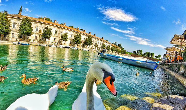 Angebot Ferien am Gardasee im Juni in Ferienanlage für Familien mit Kindern