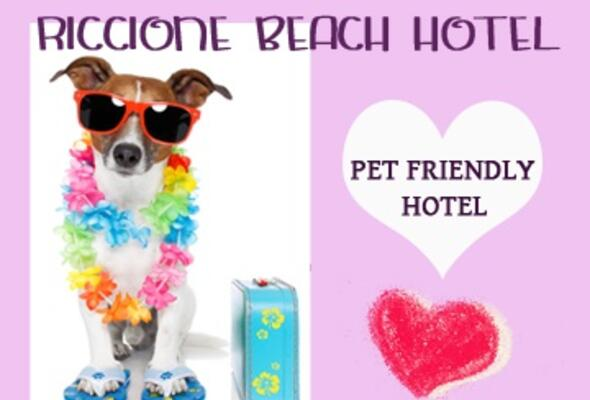 riccionebeachhotel it 1-it-281486-offerta-gare-di-pattinaggio-interinternational-skate-team-trophy 006