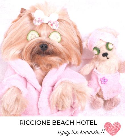 riccionebeachhotel en offers-riccione-beach-hotel 031