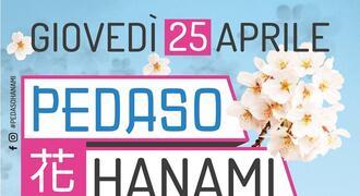 Pedaso Hanami 2019