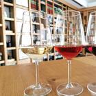 cantinacoppola it wine-tasting-tour-3-etichette-e-aperitivo-(solo-gruppi) 015
