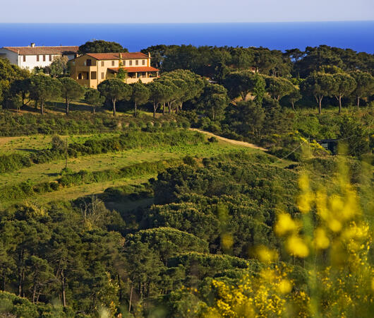 tenutadelleripalte en contacts 007