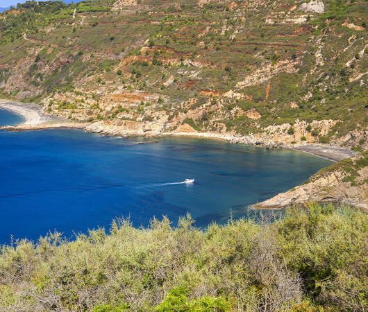 tenutadelleripalte it offerta-tour-in-montain-bike-in-resort-all-isola-d-elba 043