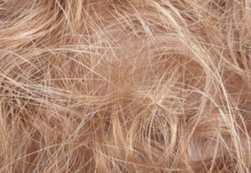 Quanti capelli cadono al giorno?