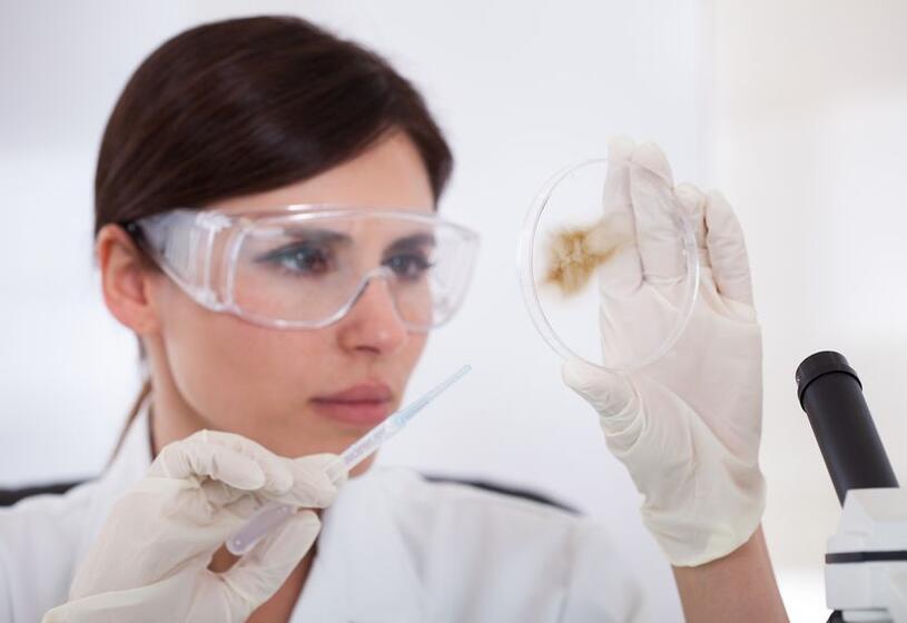 Test mineralogramma del capello: info, costi e come funziona