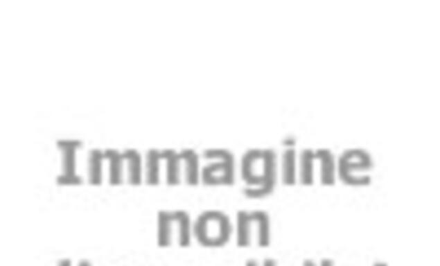 OFERTA de los dinosaurios Park Village CELANO