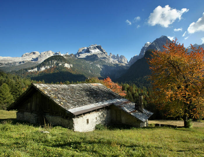BOOK FIRST YOUR HOLIDAY IN OUR HOTEL IN PINZOLO IN THE BRENTA DOLOMITES