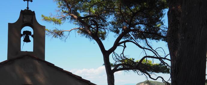 campingcampoalfico it bonus-vacanze-speciale-costa-degli-etruschi-in-camping-sul-mare 009