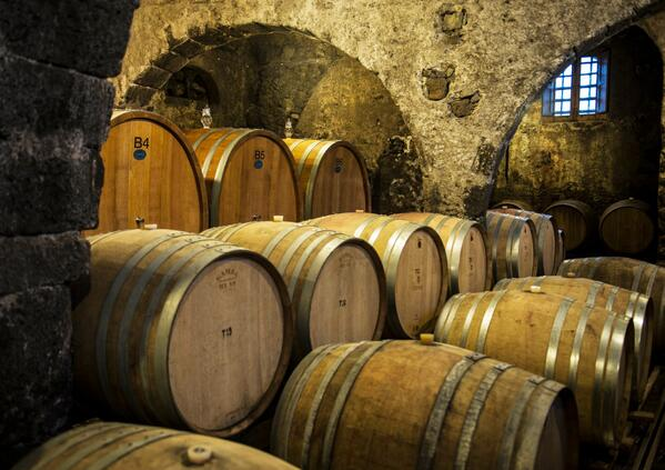 winetourinsicily en wine-tour-tasca-dalmerita-winery-regaleali 049