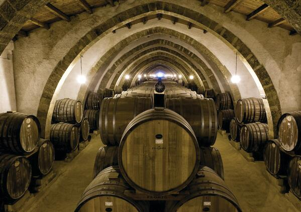 winetourinsicily en wine-tour-tasca-dalmerita-winery-regaleali 019