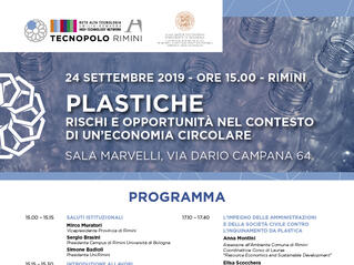tecnopolorimini en plastics-risks-and-opportunities-in-the-context-of-a-circular-economy 009