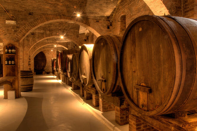centroserristori it speciale-wine-experience-in-residence-a-castiglion-fiorentino-ar 008