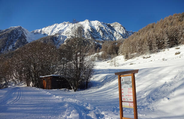 Cross-country skiing: discover the Ayas and Brusson slopes