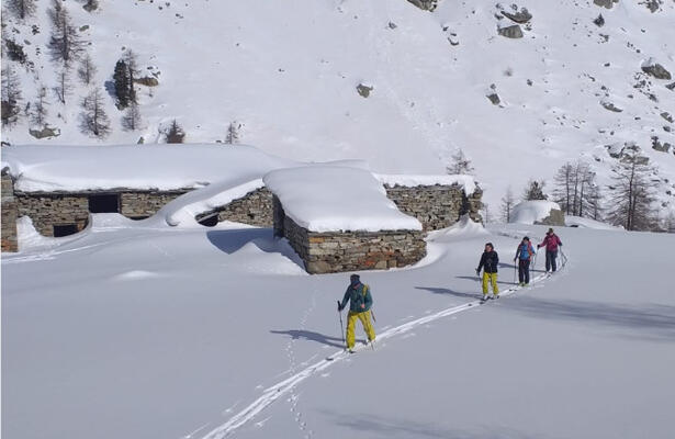 Sci alpinismo con le Guide Alpine di Champoluc