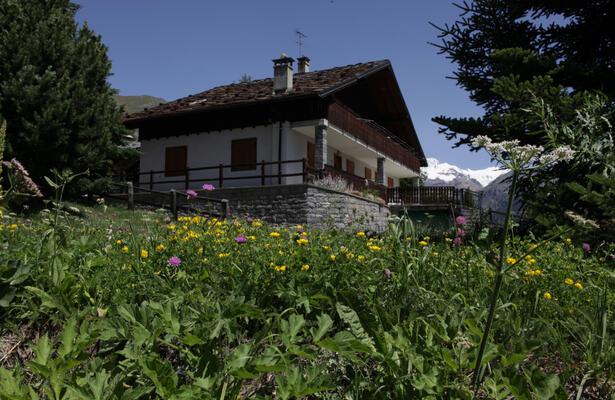 abc-vacanze it miniera-d-oro-di-chamousira-a-brusson-in-valle-d-aosta 013