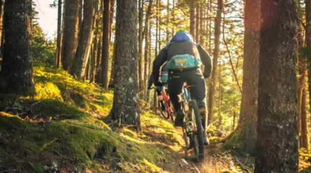 cadigianni it offerta-e-bike-e-natura-a-bagno-di-romagna 008