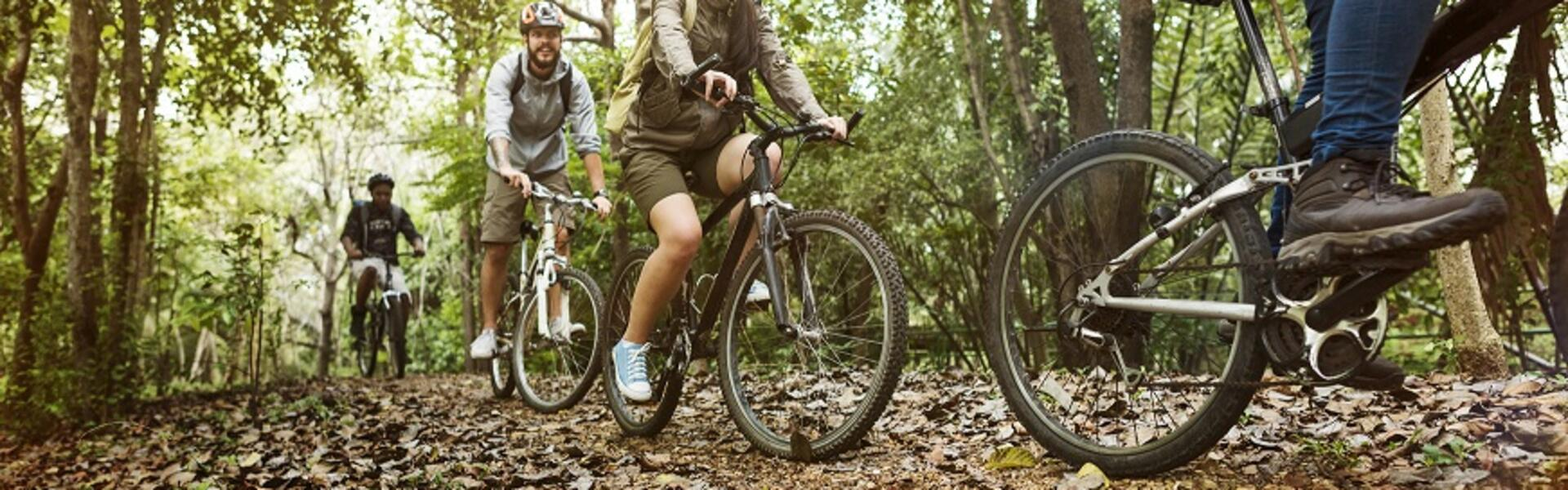 E-Bike alla scoperta del Casentino
