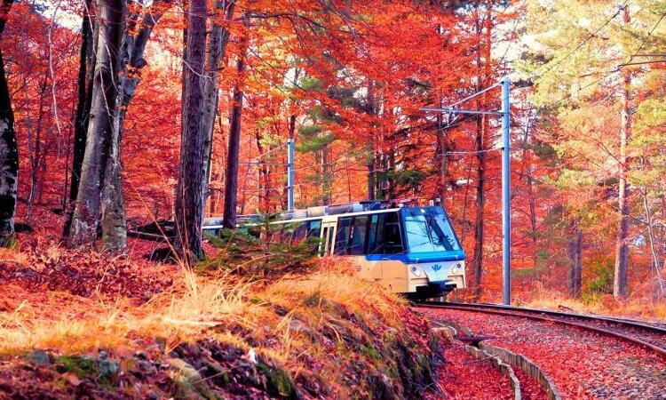 Weekend romantico d'autunno & Treno del Foliage