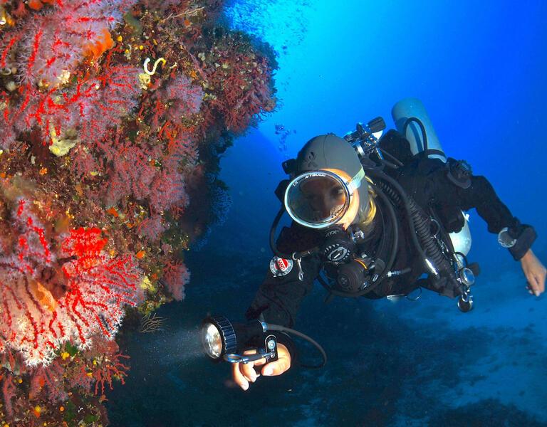 hotelconchiglia-monteargentario it offerta-immersione-nel-mare-dell-argentario 004