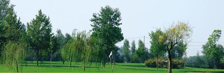 sporturhotel it 181-sport-dettaglio-promozione-stage-di-golf-con-matteo-verardo 012