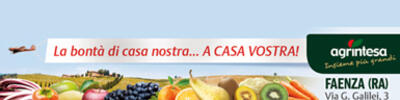 Vai a https://www.agrintesa.it