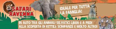 Vai a https://www.safariravenna.it