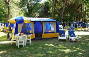 Maxi Tenda 8