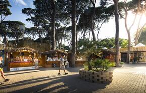 Park Albatros Village 20