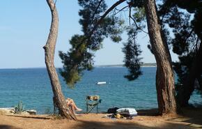 Brioni Sunny Camping 7