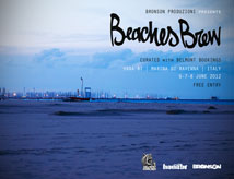 Beaches Brew Festival