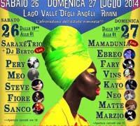 Afro Festival 2014