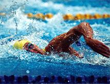 Campionati Regionali Nuoto FIN Master 2016 a Riccione