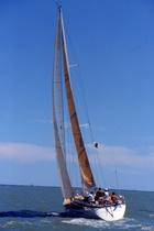 Barca a vela a Casalborsetti